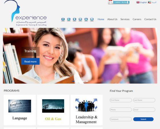 tandtglobal web design 3 image