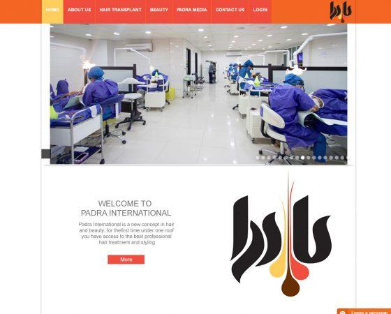 tandtglobal web design 5 image